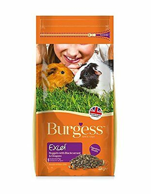 Burgess Excel Guinea Pig Nuggets Blackcurrant and Oregano 2kg  pack of 2