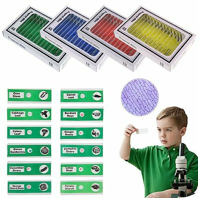 48pcs Plastic Prepared Microscope Slides Puzzle Biological Specimen Xmas Gift