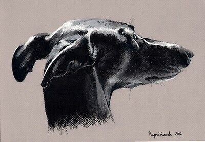 Galgo  ***   Windhund    *   A4  Limited  Print  #  215