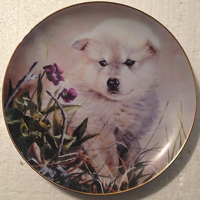 COLLECTABLE WOLF PLATE 8 1/4 INCHES - EARLY ASPIRATIONS by LINDA DANIELS- BRADEX
