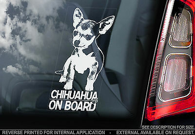 Chihuahua - Car Window Sticker - Dog on Board Sign Art Gift Short Haired - TYP1