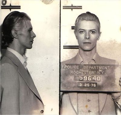 David Bowie 1976 Rare Mug shot Collectable Ziggy Stardust - Free Postage