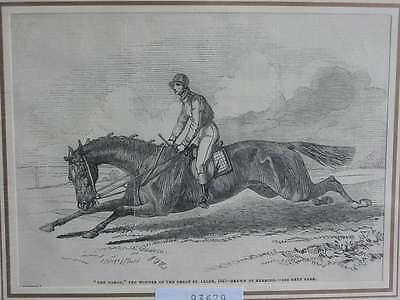 93679-The Baron-Pferd-Horses-Pferderennen-Riding-T Holzstich-Wood engraving