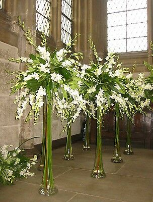 Tall Lilly Glass VASE X10 (wedding Centre Piece) (50cm)