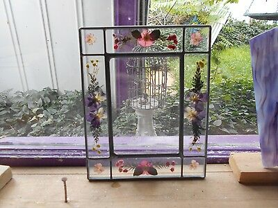 Leaded Glass Window Panel Suncatcher Dried Flowers Picture Frame Pansey