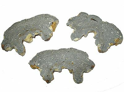 Ries glass rich Impactite MELT BOMB slice Miocene meteorite impact crater LARGE