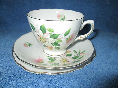 Royal Vale Bone China Trio Cup, Saucer and side plate