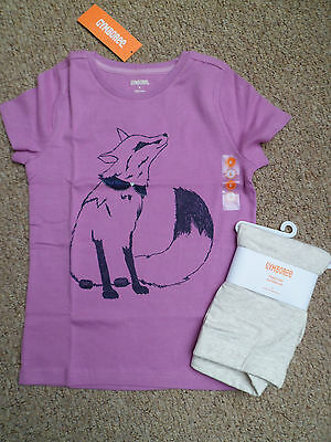 Gymboree  Fox Top And Leggings Outfit  Age 8 New With Tags