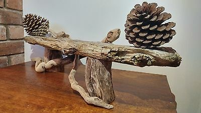 Quality Unique Driftwood Candle Holder Table centre piece rustic natural