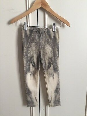 Organic Cotton Wolf Leggings By Pop Up Shop 1/2 Years