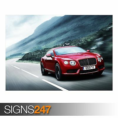 BENTLEY CONTINENTAL GT3 0197 Car Poster Photo Poster Print Art * All Sizes