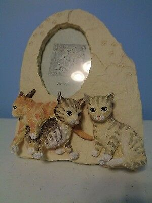 3-D Photo Frame Decorated with 3 Kittens Cats for 3.5 x 5 inch Photo