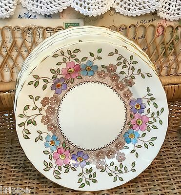 TUSCAN PLANT 1930s CHINA TEA PLATE - PINK BLUE LILAC FLORAL BORDER - MULTI