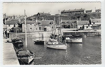 THE HARBOUR, FINDOCHTY: Banffshire postcard (C11226)