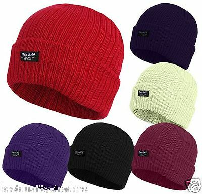 Mens/Ladies Thinsulate Beanie Hat Fleece Lined For Winter Warmth In 6 Colours