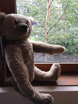 Steiff Limited Edition Vintage 1908 Teddy Bear, Fully Jointed