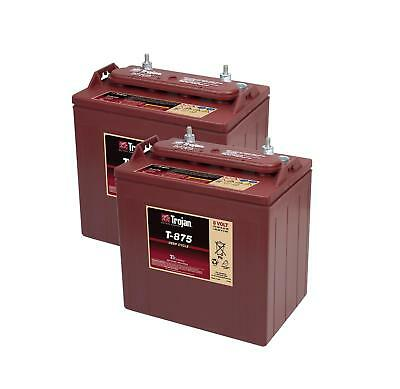 2x T-875 Trojan Battery Deep Cycle (T875) 8V - 2 Years Warranty