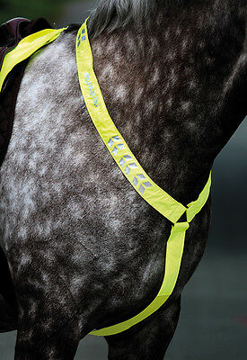 NEW Shires Hi Viz Fluorescent Yellow Pink Horse Pony Breastplate High Visibility