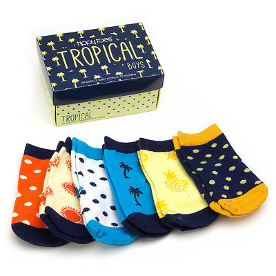 NEW Tippy Toes Tropical Boys Baby Sock Set 6pce