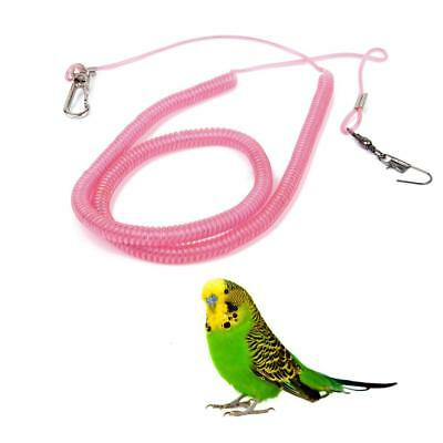 Pettorina Per Pappagalli Bird Supplies Pet Supplies Un Nuovo Modo Di Volare