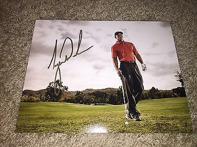 Tiger Woods Golfer Golf Hand Signed Autograph 8X10 Photo! Autograph