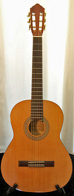 Generic Chinese Acoustic Guitar