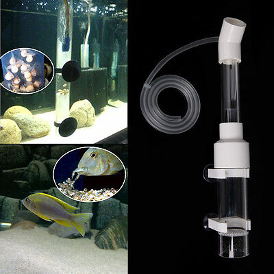 Aquarium Cichlids Tumbler Incubator Fish Hatchery Eggs Instead Mouth-Brooding