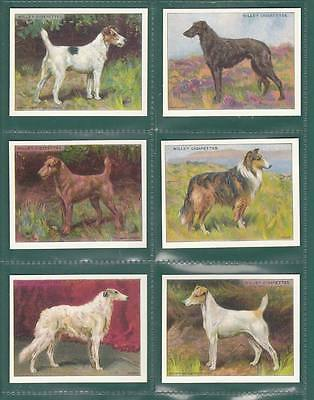 Victoria Gallery - Set  Of  L 25  Wills  ' Dogs '  Cards
