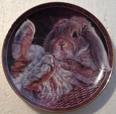 Collectable Bunny Plate 8 1/4 Inches - Bunny Tales - Footloose - Bradex