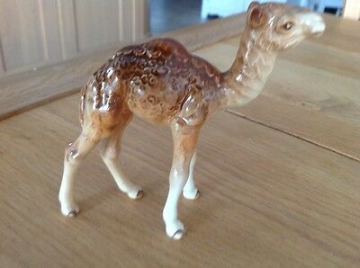 Beswick camel foal No. 1043 lovely condition.