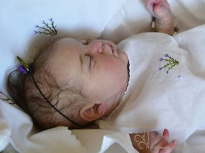 Sold Out~L.e~Doll Kit~Evangeline~By Laura Lee Eagles~Not A Reborn Baby~Mimadolls