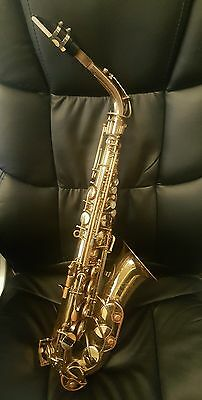 Selmer Signet Alto Saxophone Recent Serial Number Free Shipping!