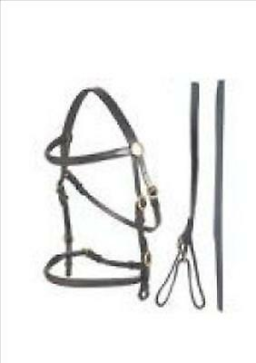 Aintree Black Leather In Hand Bridle (Full)