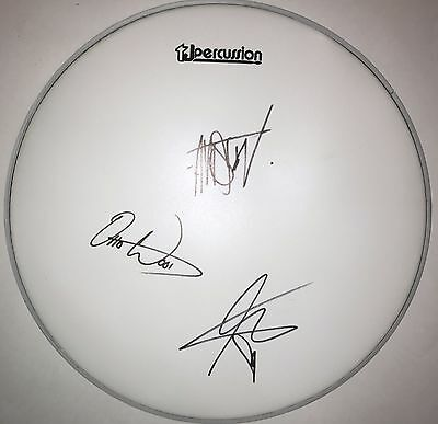 """Waterparks band REAL hand SIGNED 14"""" Drumhead w/ COA Awsten Knight Autographed"""