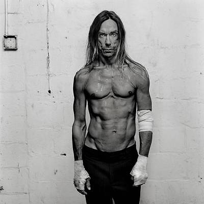 Iggy Pop Cool 8X10 Photo
