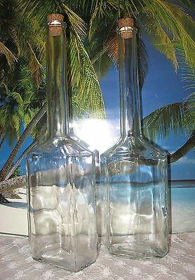 Extra Tall Set Of 2 Uniquely  Shaped Clear Glass  Decorative Bottles