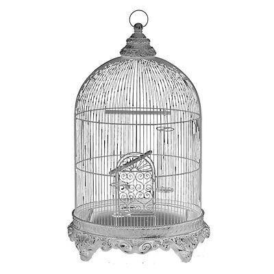 Silkroute NA1533WH Louis Birdcage (s) 25x43