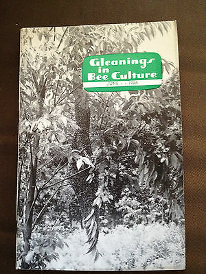 June 1946 Gleanings In Bee Culture (Usa Bee Keeping Magazine)