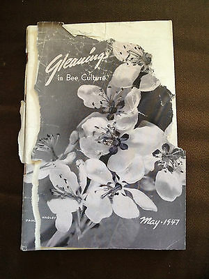 May 1947 Gleanings In Bee Culture (Usa Bee Keeping Magazine)