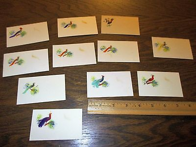 11 vintage feathered place cards