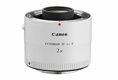 Canon Extender EF 2x serie III perfetto