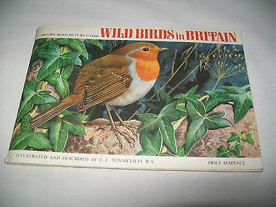"""Brooke Bond/PG Tips  Picture Cards - """"WILD BIRDS OF BRITAIN"""""""