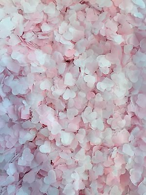3000 Biodegradable Wedding Decoration Confetti Hearts, Pastel Pink And White