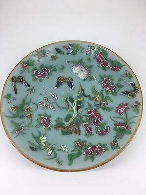 Chinese Famille Rose Celadon Plate ( 1 )