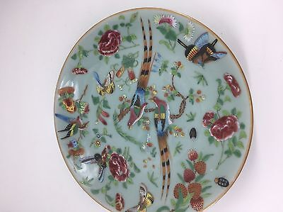 Chinese Famille Rose Celadon Glaze Plate ( 2 )