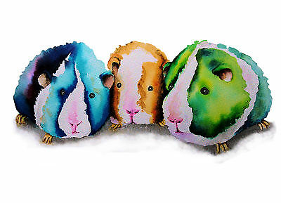 """GUINEA PIGS* LARGE 16 X 12"""" A3 SIGNED PRINT From Original Watercolour Maria Moss"""