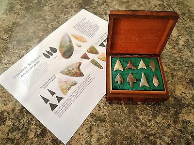 8 x Quality Neolithic Arrowheads in Antique / Wooden Box - 4000BC (0033)