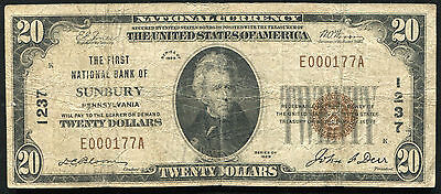 1929 $20 The First National Bank Of Sunbury, Pa National Currency Ch. #1237