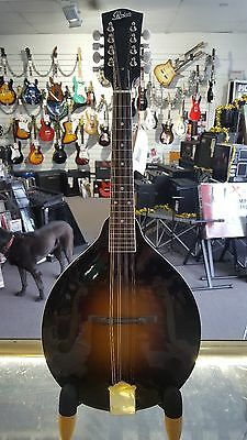 Rover RM-50 All Solid Body Mandolin Inc. Case and Headstock Tuner R.R.P $527.95