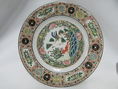 Famille Rose Chinese Medallion Foo Dog Dragon Pheasant China Porcelain Plate